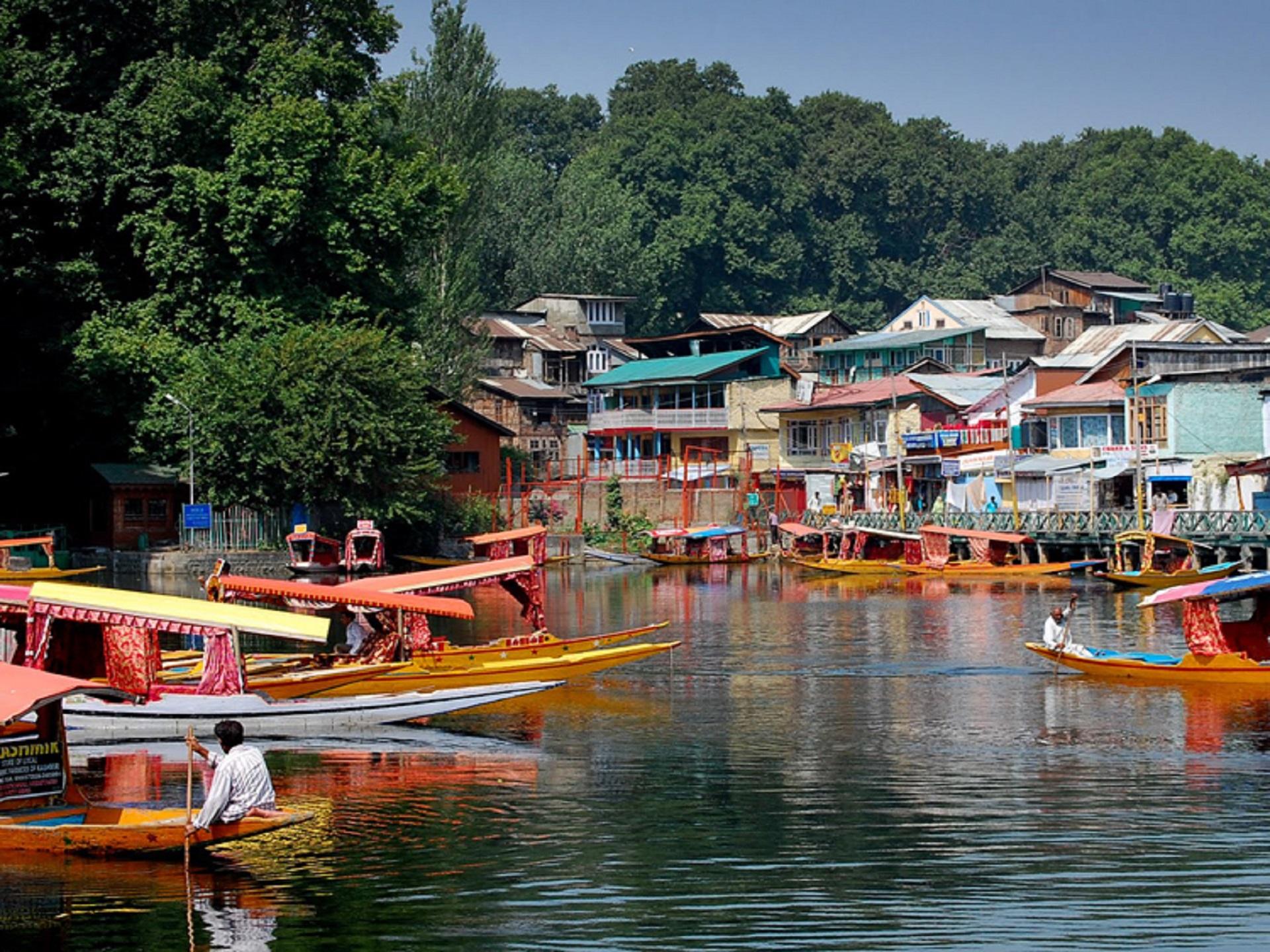 Srinagar 3
