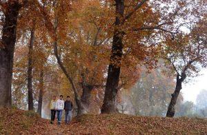 Kashmir turns pale