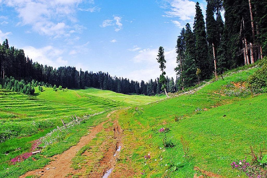 Gulmarg Living Kashmir Travels